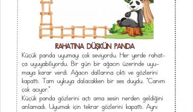 1. Sınıf Okuma Anlama Metni – 4 (Rahatına Düşkün Panda)