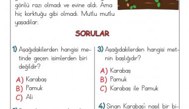 1. Sınıf Harf Bilgisi Testi (1)