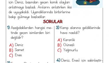 1. Sınıf Harf Bilgisi Testi (2)