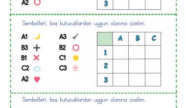 Şekil Kodlama (1)
