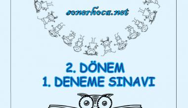 2. Dönem Mini Deneme Sınavı (1)