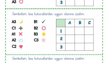 Şekil Kodlama (2)