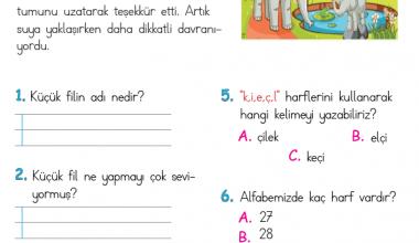 1. Sınıf Okuma Anlama Metni – 7 (Küçük Tati)