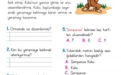Okuduğunu Anlama (8)