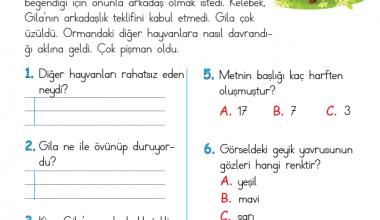 1. Sınıf Okuma Anlama Metni – 9 (Küçük Geyik Yavrusu)