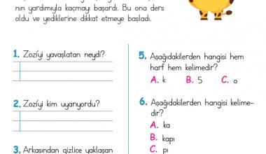 1. Sınıf Okuma Anlama Metni – 14 (Zürafa Zozi)