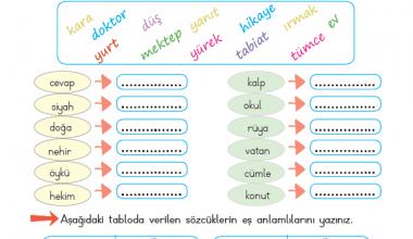 2. Sınıf Eş Anlamlı kelimeler-2