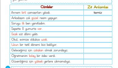 2. Sınıf Zıt Anlamlı kelimeler-1