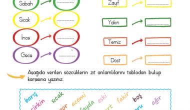 2. Sınıf Zıt Anlamlı kelimeler-3