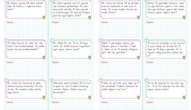 3. Sınıf Çarpma İşlemi Problemleri – 1