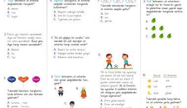 2. Sınıf Zıt Anlamlı Kelimeler Test PDF