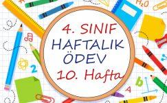 4. Sınıf Haftalık Ödev (1. Dönem 10. Hafta)