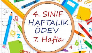 4. Sınıf Haftalık Ödev (1. Dönem 7. Hafta)