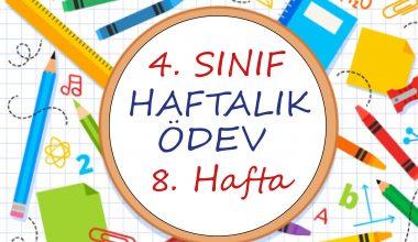 4. Sınıf Haftalık Ödev (1. Dönem 8. Hafta)