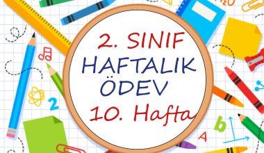 2. Sınıf Haftalık Ödev (1. Dönem 10. Hafta)