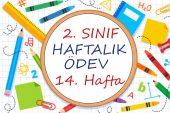 2. Sınıf Haftalık Ödev (1. Dönem 14. Hafta)