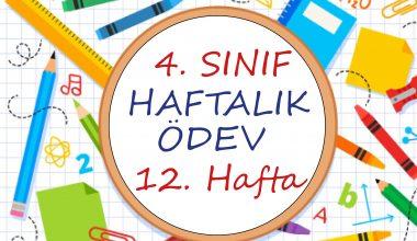 4. Sınıf Haftalık Ödev (1. Dönem 12. Hafta)