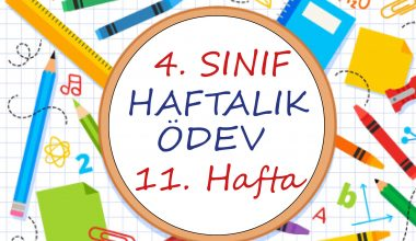 4. Sınıf Haftalık Ödev (1. Dönem 11. Hafta)