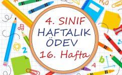 4. Sınıf Haftalık Ödev (1. Dönem 16. Hafta)