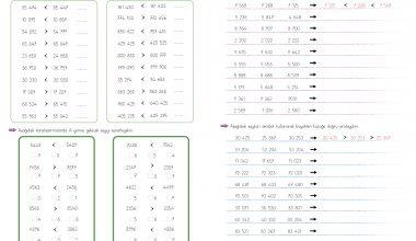 4. Sınıf Matematik(Doğal Sayılarda Sıralama – 2)