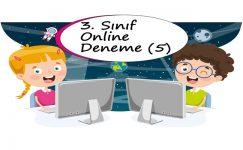 3. Sınıf Online Deneme Sınavı – 5 (2020 – 2021)