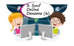 3. Sınıf Online Deneme Sınavı – 6 (2020 – 2021)