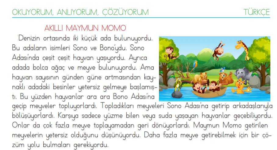 3. sınıf okuma anlama metni Akıllı Maymun Momo
