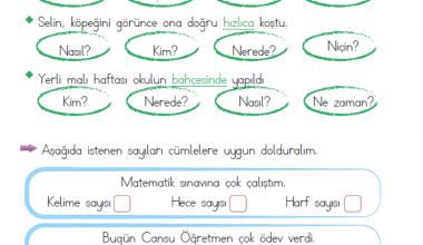 1. Sınıf 5N1K Etkinlikleri (13)