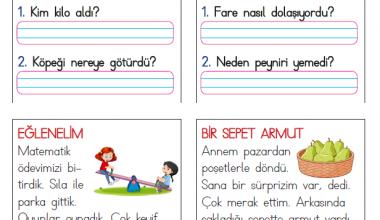 1. Sınıf Kısa Okuma Metinleri (10)