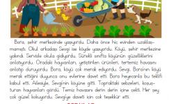 1. Sınıf Okuma Anlama Metni – 24 (Sevgi'nin Köyü)