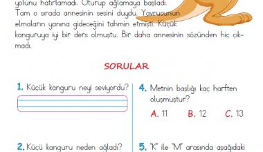1. Sınıf Okuma Anlama Metni – 19 (Küçük Kanguru)