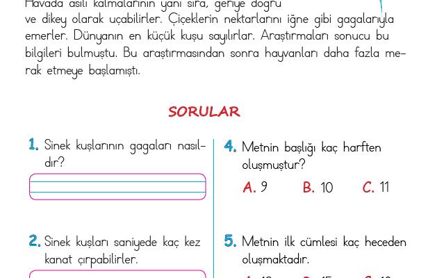 1. Sınıf Okuma Anlama Metni – 26 (Sinek Kuşu)