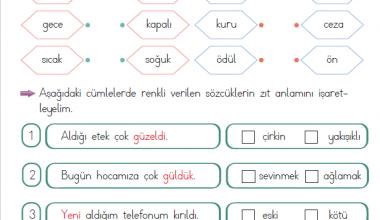1. Sınıf Zıt Anlamlı Kelimeler – 8