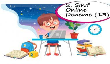 2. Sınıf Online Deneme Sınavı – 13 (2020 – 2021)