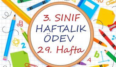 3. Sınıf Haftalık Ödev 29. Hafta (2. Dönem 12. Hafta)