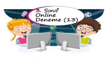 3. Sınıf Online Deneme Sınavı – 13 (2020 – 2021)