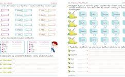 2. Sınıf Eş Anlamlı kelimeler- 5