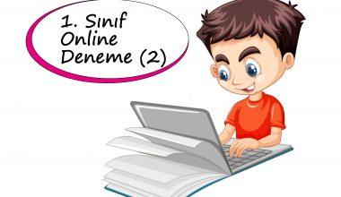 1. Sınıf Online Deneme Sınavı – 2 (2020 – 2021)