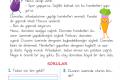 1. Sınıf Okuma Anlama Metni – 29 (Tehlikeli Hareketler)