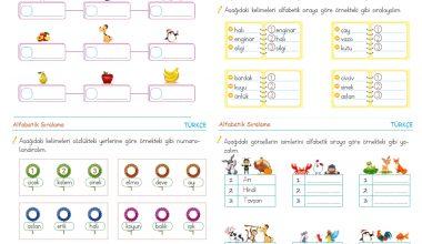 1. Sınıf Alfabetik Sıralama – 2