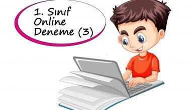 1. Sınıf Online Deneme Sınavı – 3 (2020 – 2021)