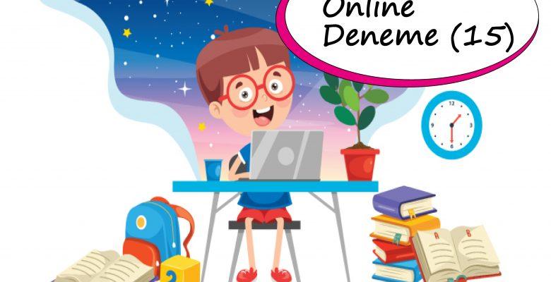 2. Sınıf Online Deneme Sınavı – 15 (2020 – 2021)