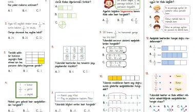 3. Sınıf Kesirler Testi – 1