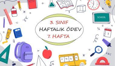 3. Sınıf Haftalık Ödev (1. Dönem 7. Hafta)